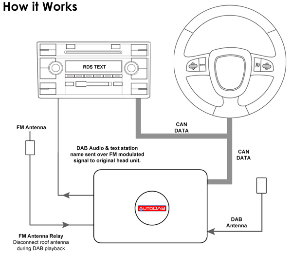 dab radio how it works connects2 autodab digital dab oem radio tuner for bmw (swdab bm2) steering wheel radio controls wiring diagram at fashall.co